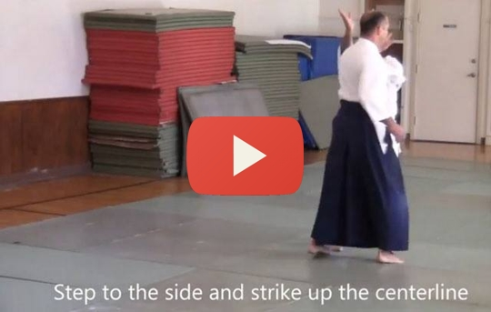 Excerpts from the 2014 Weapons Intensive Seminar with Philip Greenwood Sensei
