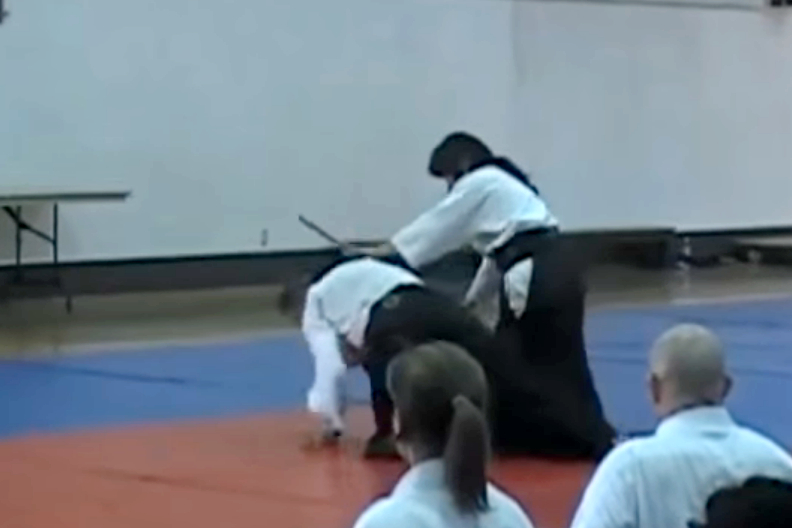 Aikido Friendship Seminar 2013: Venice, CA (Video)
