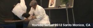 Yoshida 2012