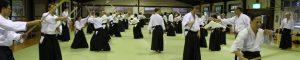 Nishio Aikido at Kannon Onsen